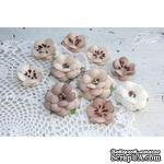 Набор цветов TM Iris - Monsella Monsella brown, 30-50 мм, 10 шт - ScrapUA.com