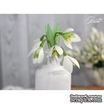 Набор цветов TM Iris - Подснежники, 5 шт - ScrapUA.com