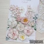 Набор цветов TM Iris - Veil Розовая пудра, 20-45 мм, 18 шт - ScrapUA.com