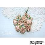 Набор цветов TM Iris - Viva Rosita светло-коричневые, 14 шт - ScrapUA.com