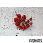 Набор цветов TM Iris - Viva Rosita красные, 14 шт - ScrapUA.com