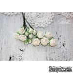 Набор цветов TM Iris - Viva Rosita белые, 14 шт - ScrapUA.com