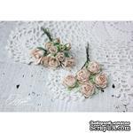 Набор цветов TM Iris - Viva Rosita бежевые, 14 шт - ScrapUA.com