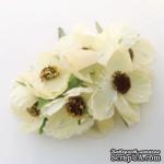 Цветок мака, белый, 1 шт. - ScrapUA.com