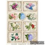 Лист с картинками LemonCraft - Vintage Time 001 - ScrapUA.com