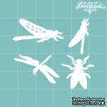 Чипборд от Вензелик - набор насекомых, размер: 45x39 мм - ScrapUA.com