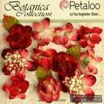 Набор объемных цветов Petaloo - Botanica Minis - Red - ScrapUA.com