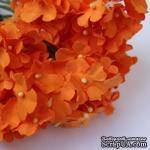 Анютины глазки, цвет оранжевый - ScrapUA.com