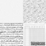 Лист ацетатный от Kaisercraft - Four Corners, 30х30 см - ScrapUA.com