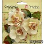 Набор цветов Petaloo - Botanica Fairy Rose Bud - Cream - ScrapUA.com