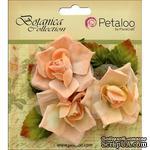 Набор цветов Petaloo - Botanica Fairy Rose Bud - Peach - ScrapUA.com