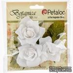 Набор цветов Petaloo - Botanica Fairy Roses - White - ScrapUA.com
