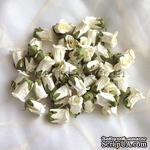 Бутон розы, цвет белый (слоновая кость), 15х23 мм, без ножки, 1 штука - ScrapUA.com
