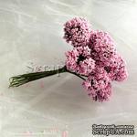 Веточки декоративные с соцветиями-шариками, цвет розовый, пучок из 12 штук - ScrapUA.com