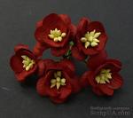 Цветы вишни, цвет темно-красный, диаметр - 25мм, 5 шт. - ScrapUA.com