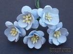 Цветы вишни, цвет нежно-голубой, диаметр - 25мм, 5 шт. - ScrapUA.com