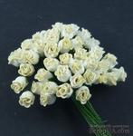Набор роз с полуоткрытым бутоном, цвет - кремовый, 5 шт. - ScrapUA.com