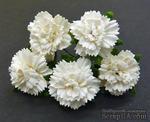 Гвоздики, цвет белый, диаметр - 25мм, 5 шт. - ScrapUA.com