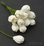 Тюльпан, цвет белый, диаметр - 10мм, 10 шт. - ScrapUA.com