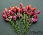 Тюльпан, цвет красный микс, диаметр - 10мм, 10 шт. - ScrapUA.com
