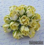 Бутоны большие дикой розы, цвет нежно-желтый, размер бутона 2 см, 1шт. - ScrapUA.com