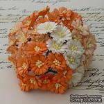 Маргаритки, цвет белый и оттенки оранжевого, диаметр - 25мм, 50 шт. - ScrapUA.com