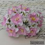 Гардения, 3,5-4 см, цвет белый с розовым центром, 1 шт. - ScrapUA.com