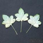 Набор бумажных листьев клена, цвет - зеленый/белый, 45 мм, 10 шт - ScrapUA.com