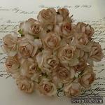 Дикая роза, цвет светло-коричневый, диаметр - 30мм, 1 шт. - ScrapUA.com