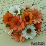 Ромашки, микс цветов (персиковый, оранжевый, белый), 45мм, 5 шт. - ScrapUA.com