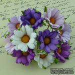 Ромашки, микс цветов (сиреневый, фиолетовый, белый), 45мм, 5 шт. - ScrapUA.com
