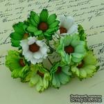 Ромашки, микс цветов (зеленый, белый), 45мм, 5 шт. - ScrapUA.com