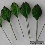 Листики розы, цвет зеленый, 15х25мм, 10 шт. - ScrapUA.com