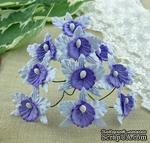 Орхидеи маленькие, цвет сиреневый с фиолетовым, 22х30мм, 5 шт. - ScrapUA.com