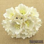 Набор лотусов, белый, 35 мм, 5 шт. - ScrapUA.com