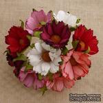 Ромашки, микс цветов (красный, розовый, белый), 45мм, 5 шт. - ScrapUA.com