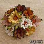 Ромашки, микс цветов (осенние оттенки), 45мм, 5 шт. - ScrapUA.com