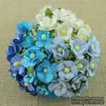 Набор цветочков  Sweetheart, микс голубых и белых оттенков, 15мм, 100 шт. - ScrapUA.com