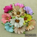 Ромашки, микс цветов, 45мм, 10 шт. - ScrapUA.com