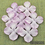 Набор гортензий, цвет светло-розовый, 25 мм, 20 шт. - ScrapUA.com