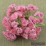 Гипсофила от Thailand, цвет светло розовый, 10 шт - ScrapUA.com