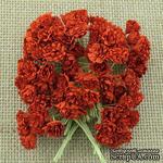 Гипсофила от Thailand, цвет красный, 10 шт - ScrapUA.com