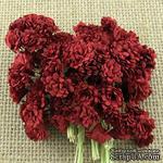 Гипсофила от Thailand, цвет темно-красный, 10 шт - ScrapUA.com