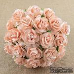 Дикая роза, цвет бледно-персиковый, 3 см., 1 шт - ScrapUA.com