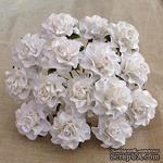 Розы от Thailand, цвет белый, 30 мм, 1 шт - ScrapUA.com