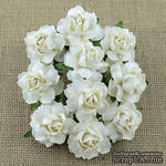 Розочка от Thailand, белые, 25 мм, 1 шт - ScrapUA.com