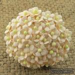 Цветочки Sweetheart, нежно-персиковый, 10мм, 10 шт. - ScrapUA.com