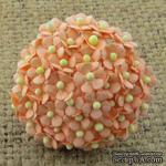 Цветочки Sweetheart, персиковый, 10мм, 10 шт. - ScrapUA.com