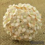 Цветочки  Sweetheart, нежно-персиковый, 15мм, 10 шт. - ScrapUA.com