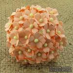 Цветочки  Sweetheart, персиковый, 15мм, 10 шт. - ScrapUA.com